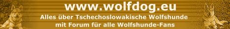 www.wolfdog.eu - Alles über Tschechoslowakische Wolfshunde mit Forum für alle Wolfshunde-Fans
